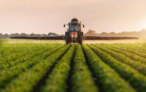 Ebersole-Monsanto img